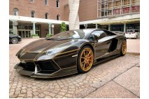 1/18 DMC Kitted LP700 Aventador Tron Design in Black with Gold lines by D&G